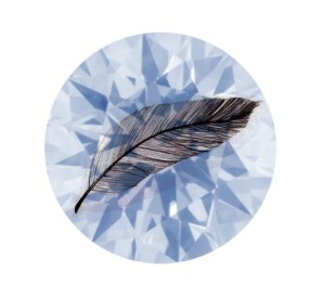 diamond-feathers